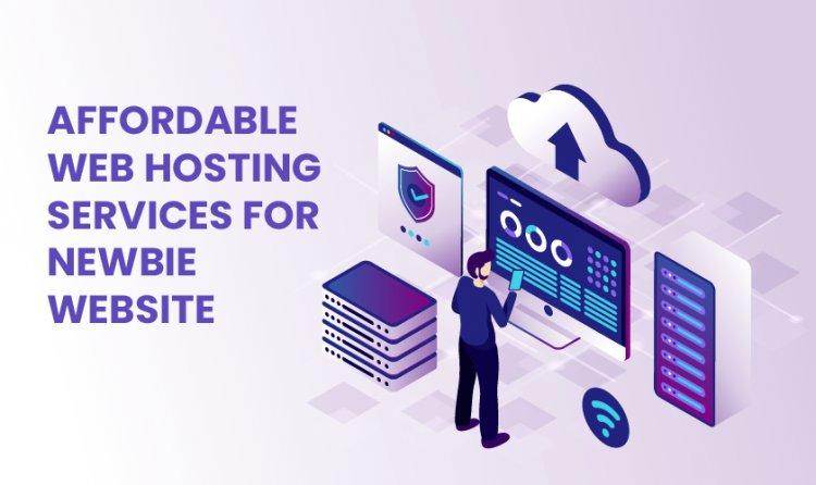 Affordable Web Hosting Services for Newbie Website
