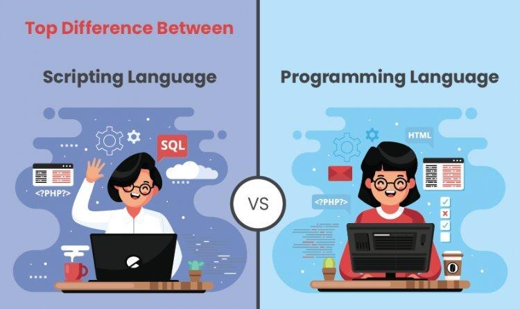 Top Difference Between Scripting Language vs Programming Language