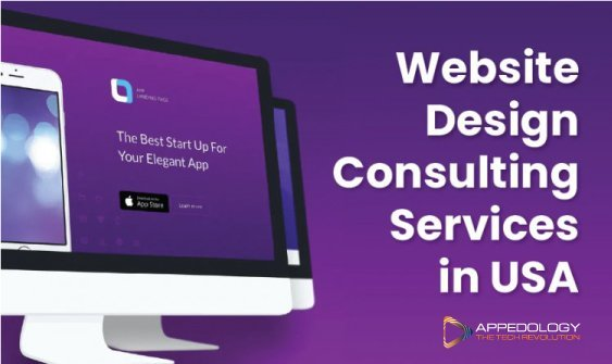 Website Design Consulting Services in USA
