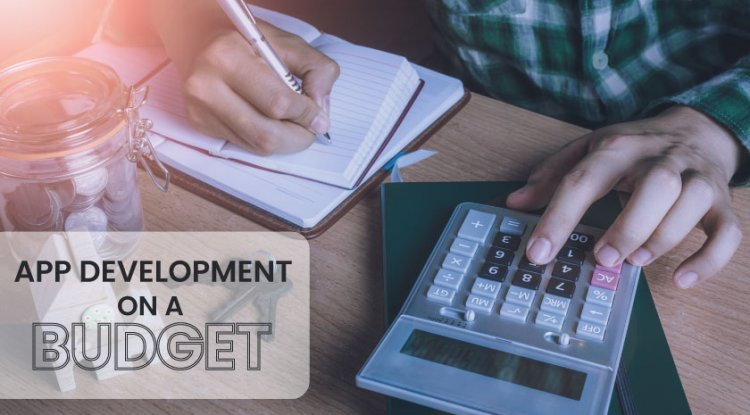 How to Manage App Development on a Budget?