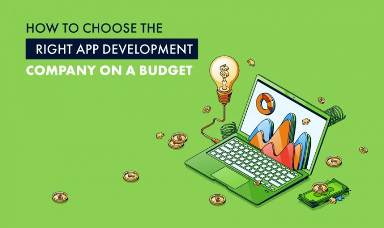 How to Choose the Right App Development Company on a Budget